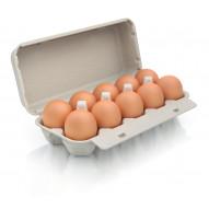 Ferma Szczotka Jaja 10 szt. L z chowu ściółkowego